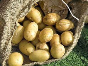 Aussies maintain potato love according to AUSVEG