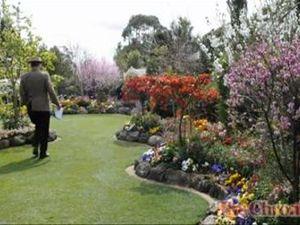 Grand Champion Carnival Garden 2012
