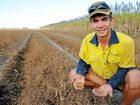CROP DEMAND: Mitchell Chapman with a handful of field peas. The Asian demand has forced up prices of legume crops.