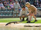 Australia Zoo has entered into the Queensland Tourism Awards.