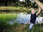 Peter Hardwick of Nimbin has been regenerating dams in the Nimbin area with a great deal of success.