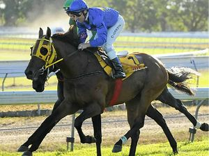 Lismore hopes for the cup