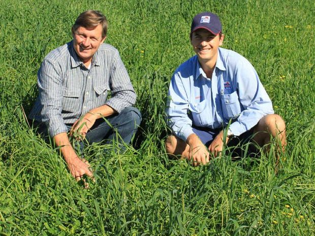 LUSH PASTURE: From left: Tom Amey of Dyraaba and Angus Lego (Norco agronomist) inspecting the clover content in the newly sown pasture.