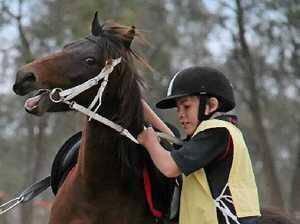 Pony Club wraps up