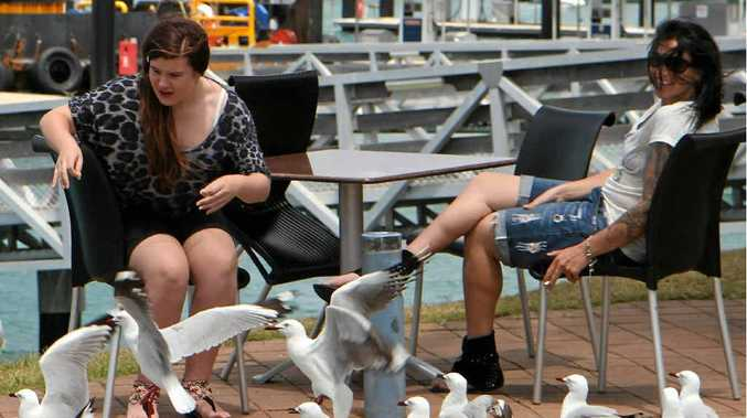 A relaxing day at Mackay Marina can include a visit from the resident seagulls, as Chelsea Cooper and Kristi Wolfe discovered yesterday.