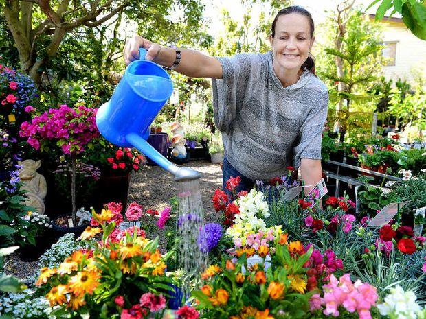 spring garden senior personals Spring gardens senior living, saint george, ut 1,177 likes 23 talking about this a senior living community.