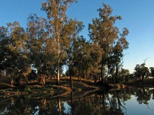 Report calls for strong leadership on Murray-Darling plan