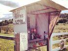 Roadside stall at Myocum
