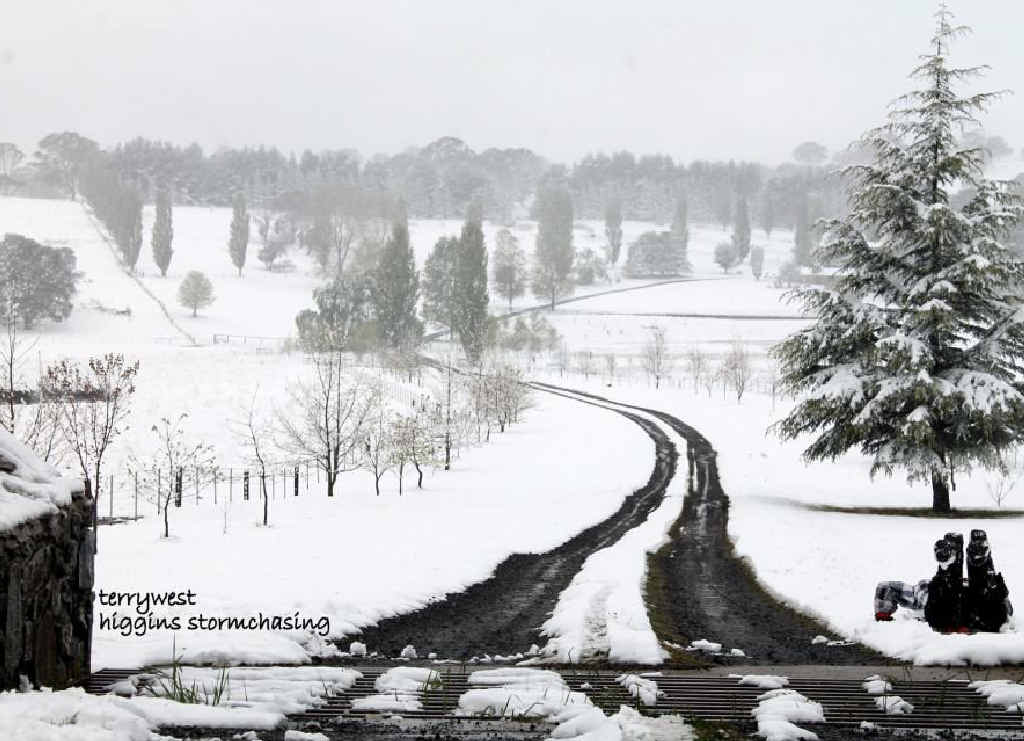 Southern Downs storm chaser Terry West of Higgins Stormchasing snapped this amazing snow shot yesterday morning just outside Glen Innes, 90km south of Tenterfield.