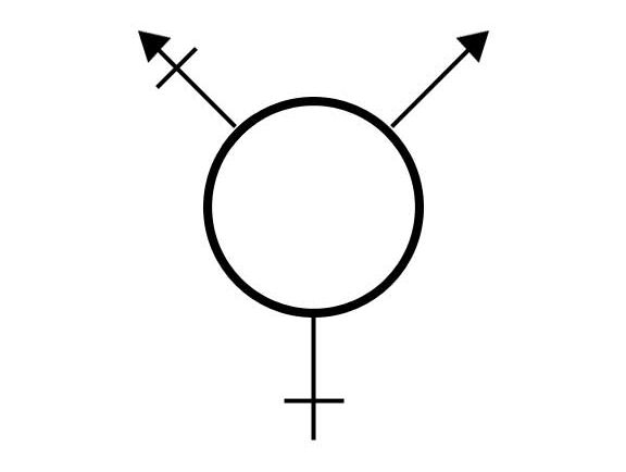 The logo representing the Trans* community