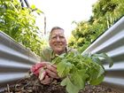 Water saving garden proves ideal for city living