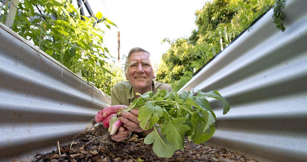 Alan Singleton in his water saving garden .
