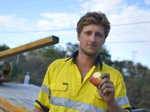 Hard-working tradies need good fuel to keep them going
