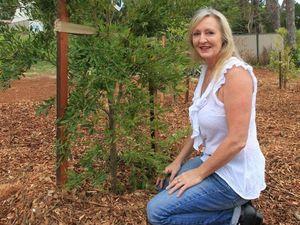 Resident says Buderim park name too bland