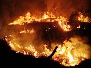 Motorists asked to take care in smoke from Euleilah fire
