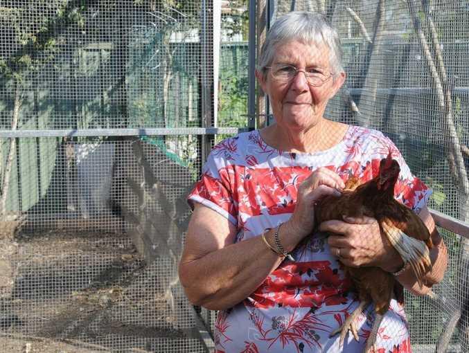 Maryborough's Cheryl Cartwright has been left wondering what happened to her 14 chickens.