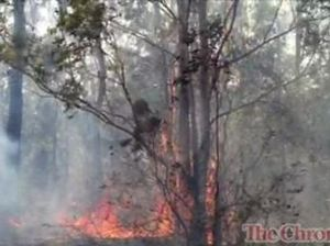 Fires near Crows Nest