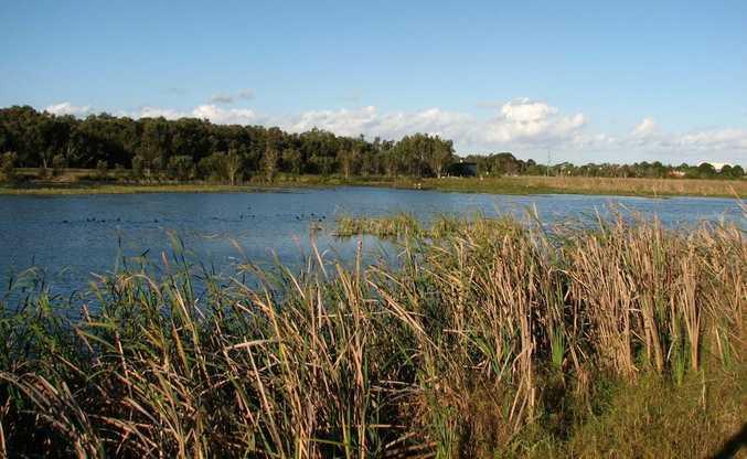 West Byron Sewage Treatment Plant wetlands