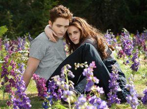Twilight movie experience auction raises $1600 for hospital