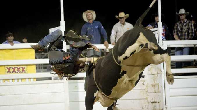 Bucking bull toowoomba