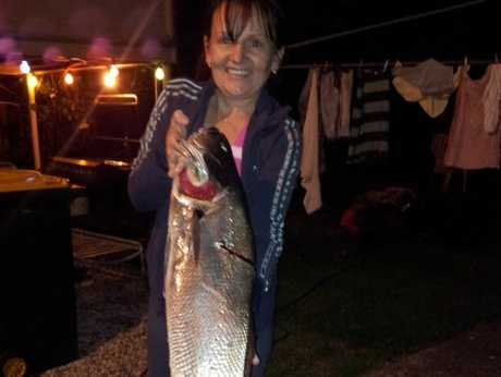 Yvonne Dalziel with an 98cm (8 kg) Jewie caught on 4 lb line and 4lb carbon fibre rod on a beach worm baited whiting rig off the bank near Yinni Street.
