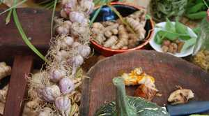Produce from the suburban garden of Jude and Michel Fanton at Byron Bay.