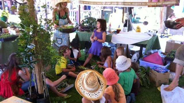 The children's garden at the Mullumbimby Living Food and Soil Festival.
