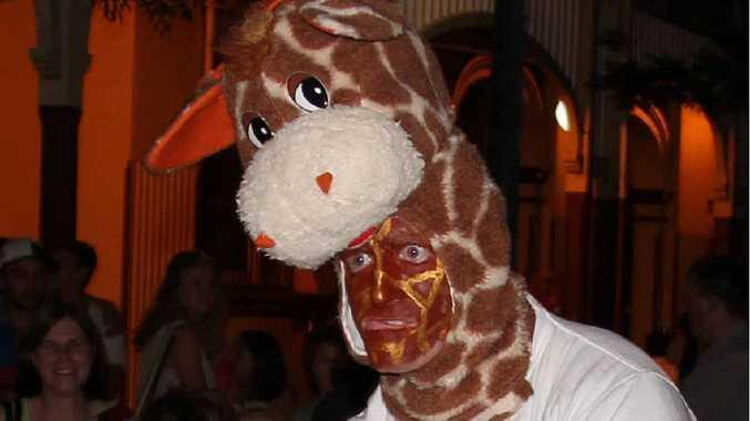 Ziggy the giraffe on his victory lap.