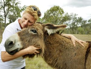 Heike Mack-Behle from Destiny Boonah Donkey Farm with Sammy, a long haired donkey. Heike is committed to donkey rescue and welfare.