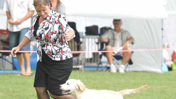 GOOD PUP: Teresa Anderson and Maya took out first in their class for puppy bitch at the Maclean show. Photo: JoJo Newby