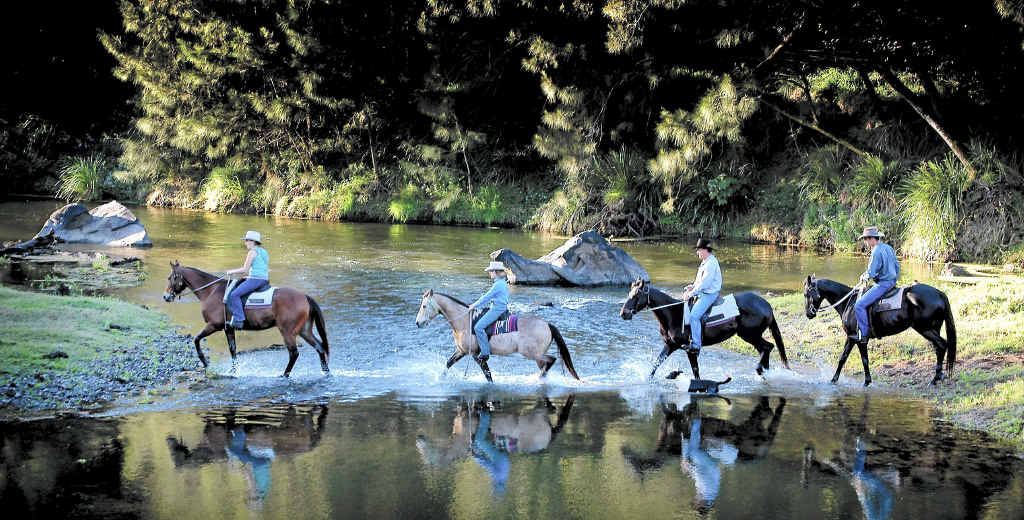 The LNP State Government has muddied the waters over the future of Traveston Crossing Dam site.