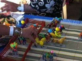 Melbourne cup fever hits Gladstone turf club