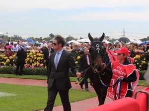 Grafton girl in the centre of Melbourne Cup Day action