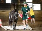 St Brigid's Primary School year 7 student Nattanan Connah taking part in the Equine Learning for Futures program at Palmerston Indoor Arena, Walloon. Photo: David Nielsen / The Queensland Times