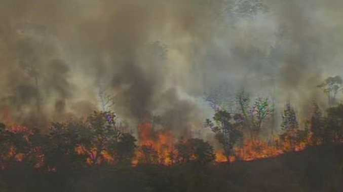 A large bush fire is raging at Bongaree, Bribie Island. Photo courtesy www.ourbribie.com