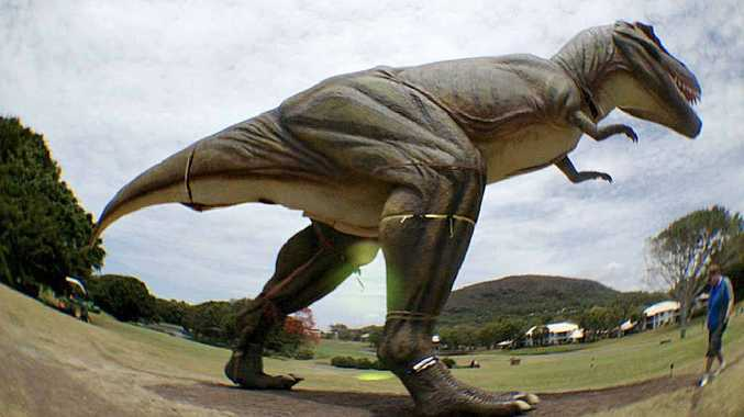 UNDER WRAPS? The T-rex replica, 'captured' in a 'secret' fish-eye lens photo, stalks the Palmer Resort fairways.