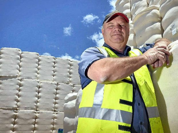RECORD BROKEN: Queensland Cotton Cecil Plains plant superintendent Ian Cesari with some of the 730,000 cotton bales ginned on the Darling Downs this year.