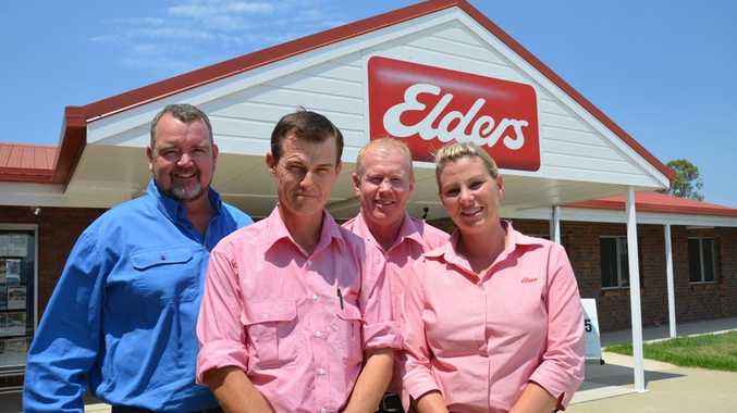 Elders Warwick principal Andrew Williams with employees Dan McGaw, George McVeigh and Clare Pavy.