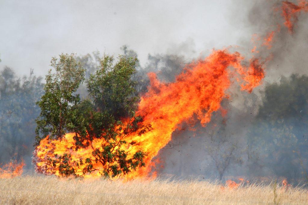 Central Queensland is on a high bushfire alert.