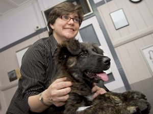Catherine warns pet owners to get their dogs vaccinated