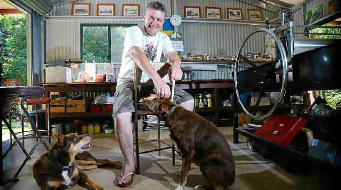 PAWS FOR THOUGHT: Artist Scott Trevelyan pictured at his Alstonville property with his beloved dogs Indy and Bundy.