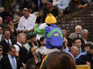 Get On Track for all the racing carnival news