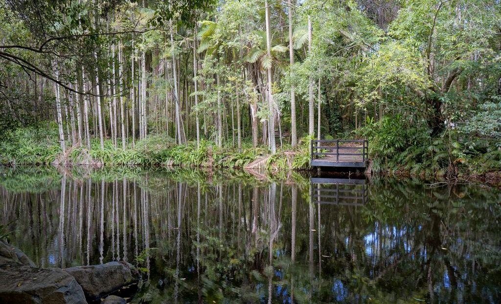 The Tondoon Botanic Gardens, Glenlyon Road, Gladstone.