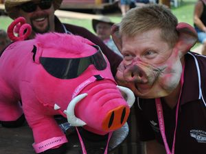 Nindigully Pub pig races raise almost $20,000 for RFDS