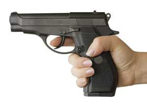 Gun licence applications now online
