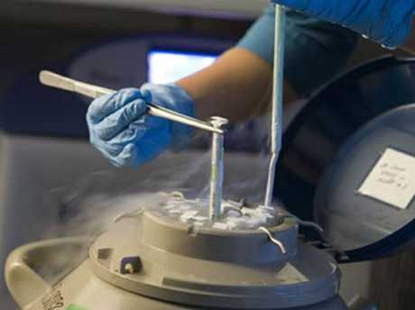 IVF can be costly.