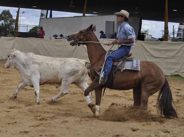 Dirt flys as Geoff Dennien reigns in his horse at the Dalby Stockhorse Sale campdraft last year.