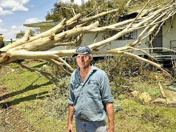 FULL FORCE: Don Steffens, of Felton, had a tree land on his house during last weekend's storm.