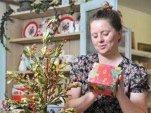 Christmas trees on display