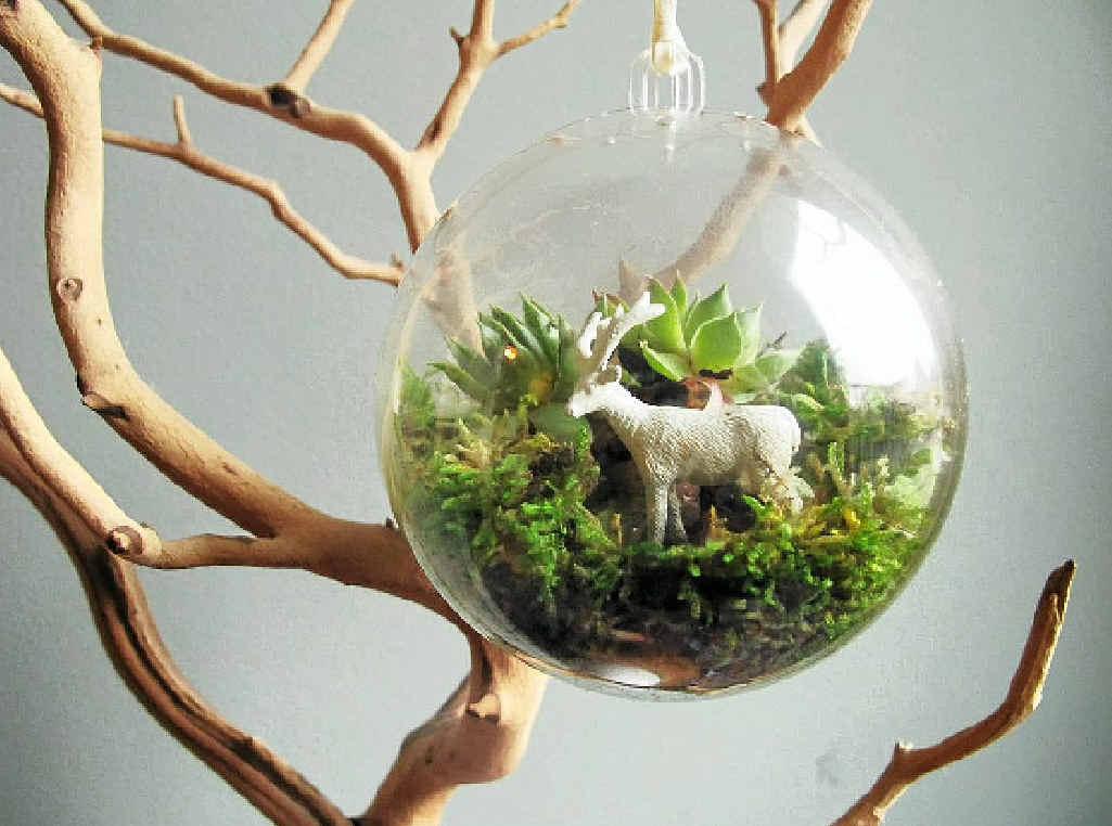 A terrarium is the ultimate, low-maintenance indoor garden.
